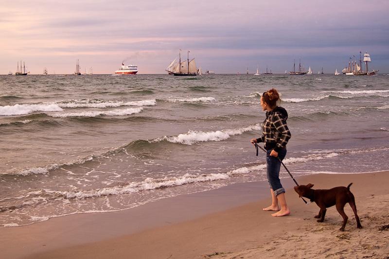Hanse Sail Rostock Warnemünde Besucher mit Hund am Strand am Horizont eine Fähre und Segelschiffe